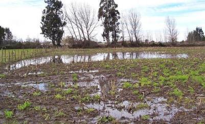 campo_inundacion_fyo_argentina_0